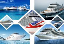 Important Tips for Cruise