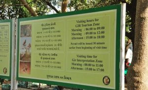 sasan gir entry time table