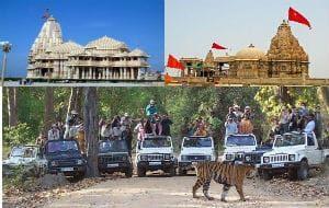 Dwarka Somnath with Gir tour