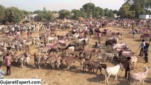 Vautha Fair in Gujarat