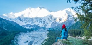 Choosing a Right Travel Companion