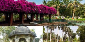 Gardens in Gujarat