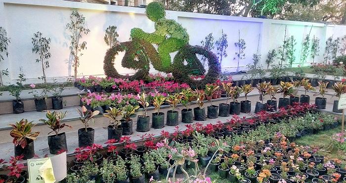 Step Garden in Rajkot