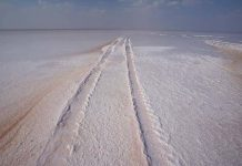 Great Rann of Kutch, Gujrat