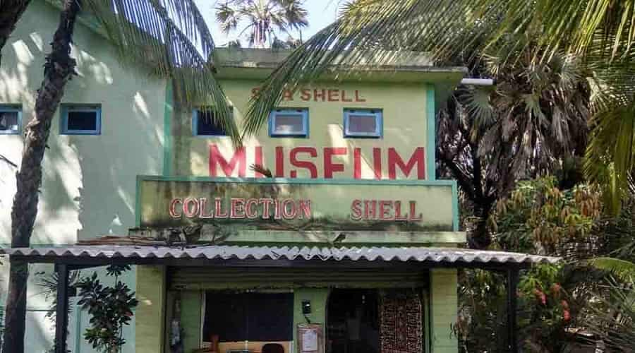 Shell Museum, Diu