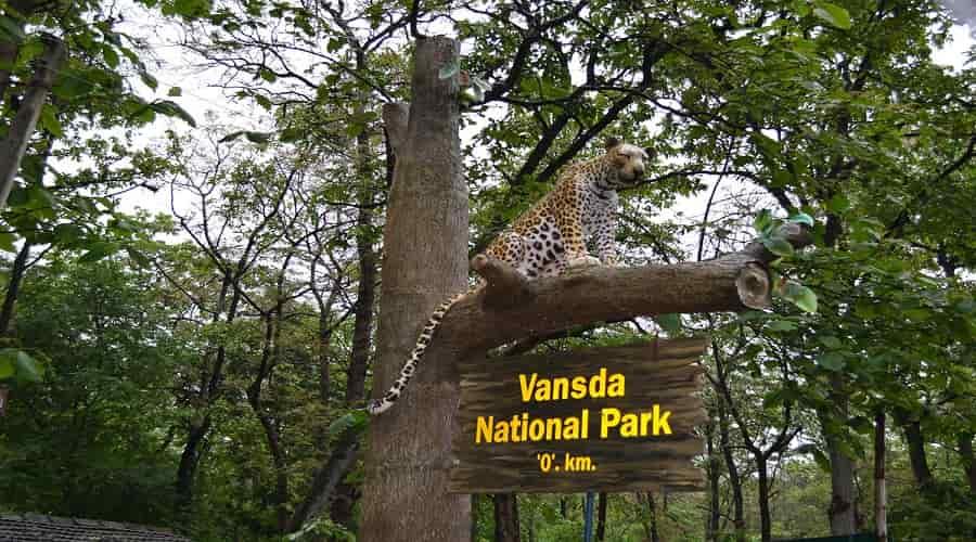 Vansda-National-Park