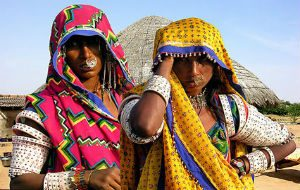 gujarat tribes tours