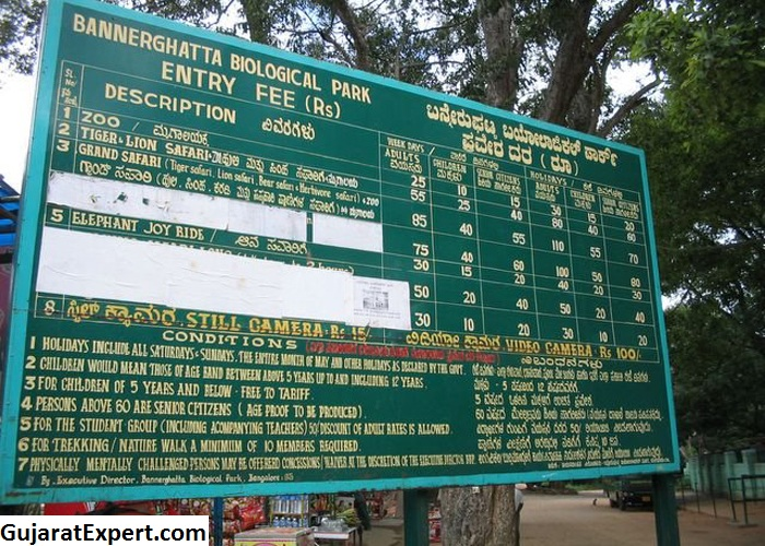 Gir National Park Entry Fee and Timetable