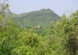 Barda Hills, Jamnagar