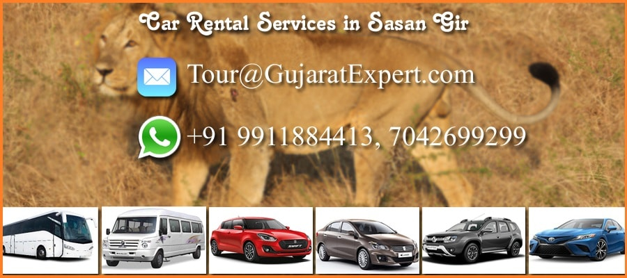 Car Rental in Sasan Gir