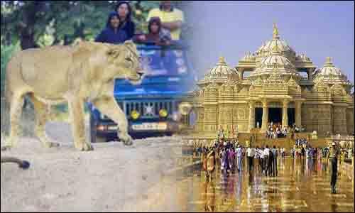 Ahmedabad Gir Weekend Tour
