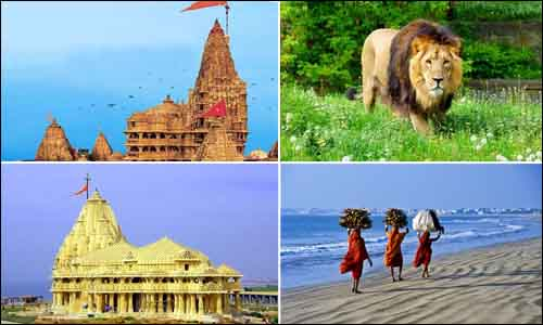 Dwarka Somnath Gir Diu Tour
