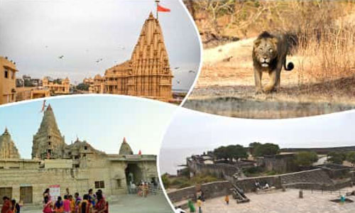 Exhilarating Gujarat Tour